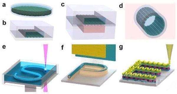 微流控芯片中的液—液萃取分离图片
